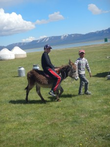 Donkey ride in yurt camp at Song Kol