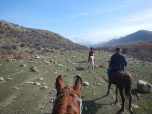 Horse Trek by way of Saruu