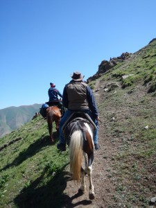 Rugged horse trek